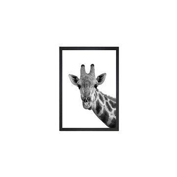 Obraz Tablo Center Giraffe Portrait, 24 x 29 cm